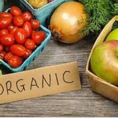 Por que consumir alimentos orgânicos? Por Jessica Zarro