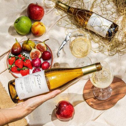 Intelivino reúne conteúdo completo sobre vinho em um só lugar